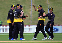 Malcolm Nofal celebrates dismissing Michael Barry during the Ford trophy one day cricket match between Wellington Firebirds and Auckland Aces at the Basin Reserve in Wellington, New Zealand on Sunday, 4 November 2018. Photo: Dave Lintott / lintottphoto.co.nz