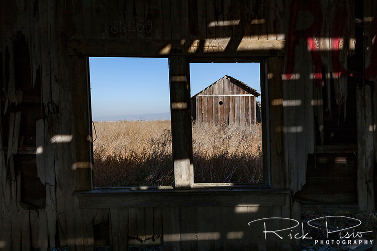 View from the window of an abandoned shack at the ghost town of Drawbridge in southern San Francisco Bay. Drawbridge was a hunting village started in the 1880's with the last resident leaving in the 1970's.