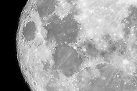 Sunday 20 March - a detailed crop of the super moon. This isn't even a 1:1 image, I can zoom closer...