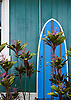 A surfboard in the town of Hanalei, on the island of Kauai, Hawaii. Photo by Kevin J. Miyazaki/Redux