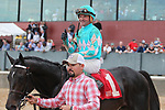 HOT SPRINGS, AR - FEBRUARY 19: My Boy Jack #1, with jockey Kent Desormeaux aboard, celebrating after winning the Southwest Stakes at Oaklawn Park on February 19, 2018 in Hot Springs, Arkansas. (Photo by Justin Manning/Eclipse Sportswire/Getty Images)