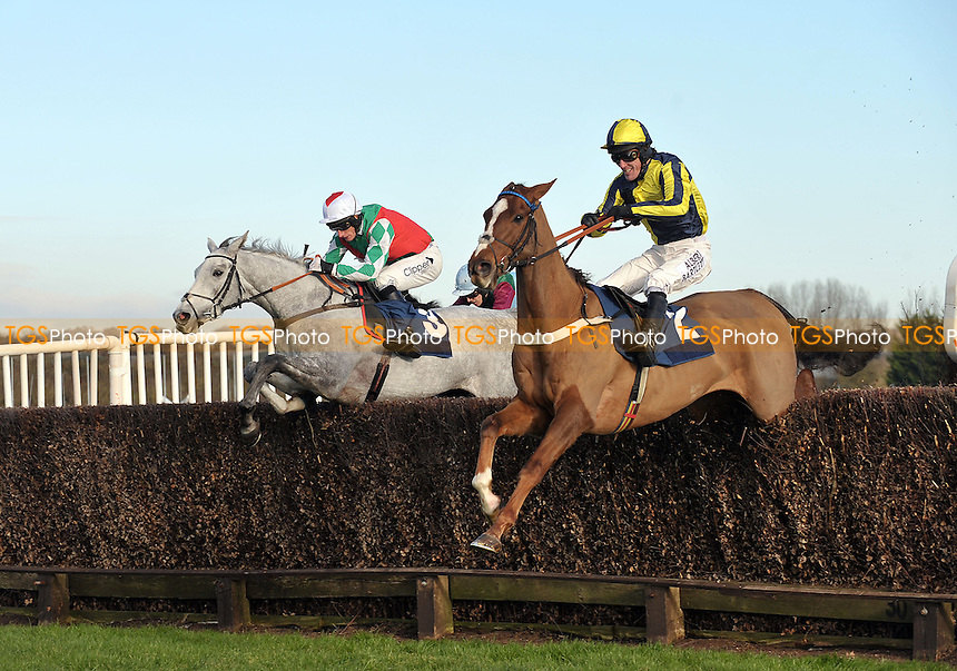 Kruzhlinin ridden by AP McCoy leads from Elenika ridden by Daryl Jacob in the Burges Salmon Novices´ Limited Handicap Chase - Horse Racing at Newbury Racecourse, Newbury, Berkshire -29/11/2012 - MANDATORY CREDIT: Martin Dalton/TGSPHOTO - Self billing applies where appropriate - 0845 094 6026 - contact@tgsphoto.co.uk - NO UNPAID USE.