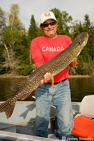 Fisherman holding a huge northern pike