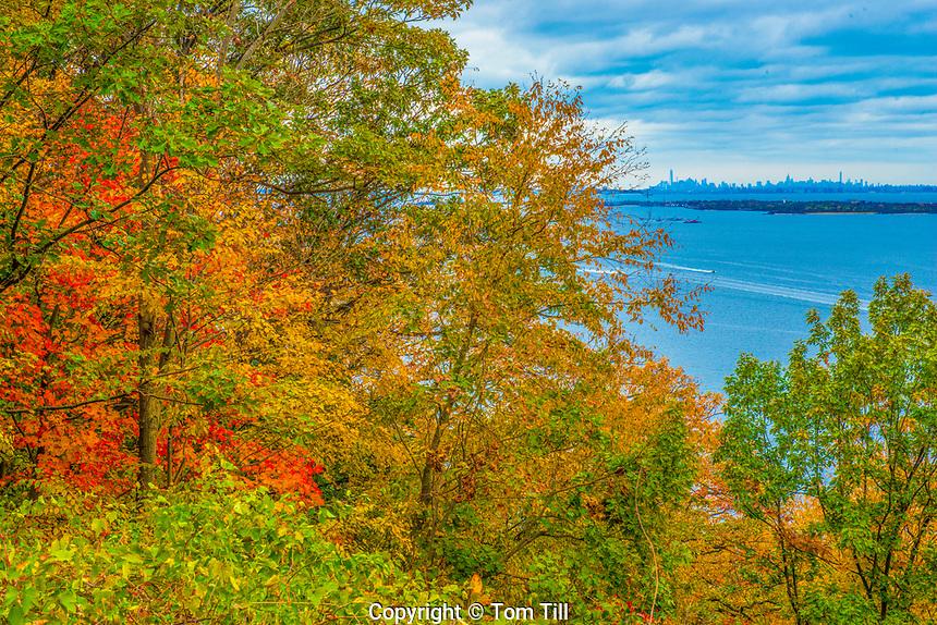 View of New York skyline from Hartshorne Woods Park, New Jersey, Atlantic Ocean