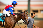 AUG 11: Danuska's My Girl with Geovanni Franco wins the Rancho Bernardo Stakes at The Del Mar Thoroughbred Club in Del Mar, California on August 11, 2019. Evers/Eclipse Sportswire/CSM