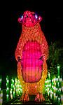 Sun Bear lantern during the Vivid 2016 Sydney Festival at Taronga Zoo, Sydney Australia.