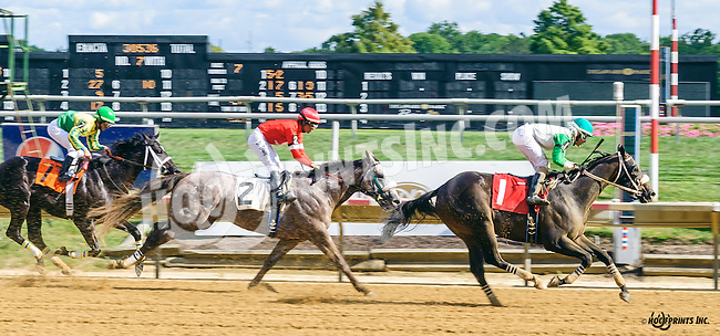 Yo Soy El Lobo winning at Delaware Park on 9/3/16