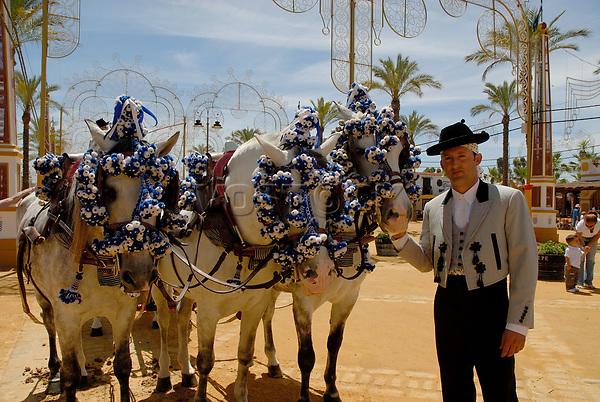 Decorated horses , Feria de Caballo , Jerez de la Frontera , Cadiz , Andalusia , Spain , Europe