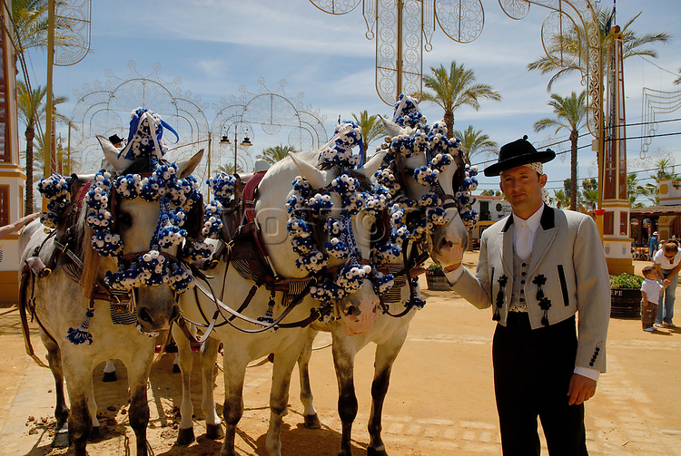 Decorated horses , Feria de Caballo , Jerez de la Frontera , Cadiz , Andalusia , Spain , Europe