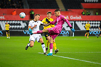 23rd November 2019; Liberty Stadium, Swansea, Glamorgan, Wales; English Football League Championship, Swansea City versus Millwall; Freddie Woodman of Swansea City clears the ball from danger - Strictly Editorial Use Only. No use with unauthorized audio, video, data, fixture lists, club/league logos or 'live' services. Online in-match use limited to 120 images, no video emulation. No use in betting, games or single club/league/player publications