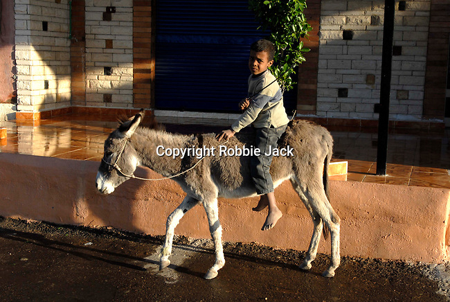 Young boy with a donkey in Luxor.The town of Luxor occupies the eastern part of a great city of antiquity which the ancient Egytians called Waset and the Greeks named Thebes.
