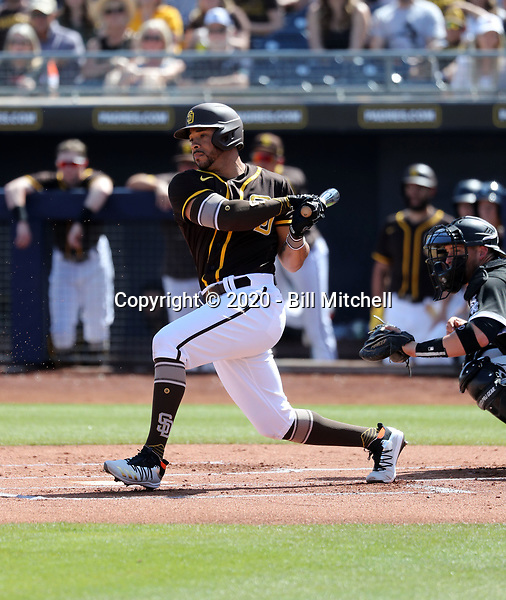 Tommy Pham - San Diego Padres 2020 spring training (Bill Mitchell)