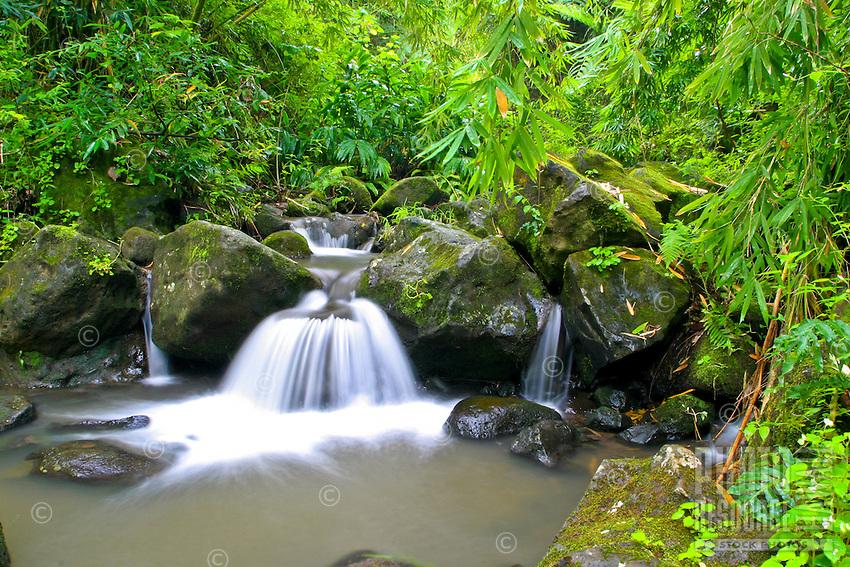 A scenic waterfall is one of many along the  Maunawili Hiking trail, windward Oahu.