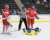Filip Novotny (Czech Republic - 1), Michal Poletin (Czech Republic - 20), Calle Järnkrok (Sweden - 25) - Sweden defeated the Czech Republic 4-2 at the Urban Plains Center in Fargo, North Dakota, on Saturday, April 18, 2009, in their final match of the 2009 World Under 18 Championship.
