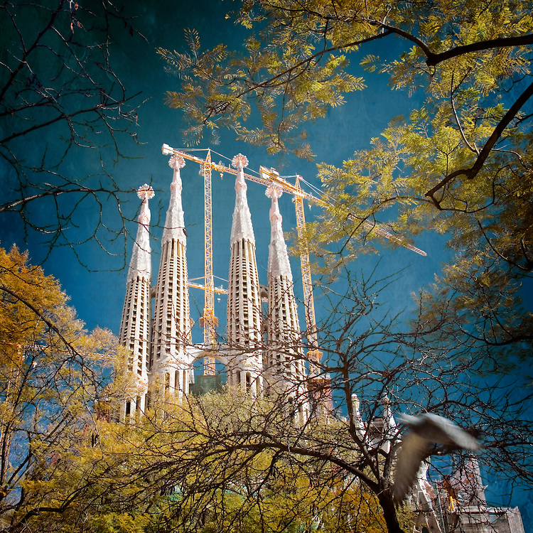 Towers of Sagrada Familia Barcelona Spain