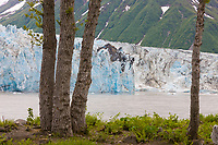 Childs glacier along the Copper River, southcentral, Alaska.