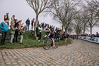 Tiffany Cromwell at the front of the Peloton on the Paddestraat during the 16th Ronde Van Vlaanderen<br /> <br /> Elite Womans Race (1.WWT)<br /> <br /> One day race from Oudenaarde to Oudenaarde<br /> ©Jojo Harper for Kramon