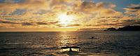 DIGITAL COMPOSITE: Humpback whale sounds in Hinchinbrook Entrance, Prince William Sound, Alaska