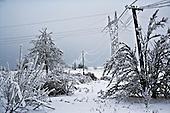 Kotowice 01.2010 Poland<br /> Three atmospheric forces: rain, snow and frost have changed into an ecological disaster the Myszkowski district in the Czestochowskie province,located 230 kilometers south of Warsaw. Almost 95% of all trees are down.Thousands of homes are left without electricity.<br /> Photo: Adam Lach / Napo Images for Newsweek Polska.<br /> <br /> Wstepnie &quot;tylko&quot; 95% scietych drzew w dwoch powiatach. 0.5 miliona metrow szesciennych zniszczonych lasow. Tysiace gospodarstw bez pradu. Wszyscy maja swiadomosc, ze na kumulacje trzech niekorzystnych .zjawisk atmosferycznych rady nie ma..Trzy zjawiska kt&oacute;re zamienily jeden z obszarow Polski w istn? katastrofe ekologiczna: deszcz, snieg i szadz.<br /> Fot: Adam Lach / Napo Images dla Newsweek Polska