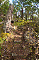 Stone stairs built into trail on west side of Jones Island, Jones Island State Park, San Juan Islands, Washington, US