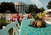Washington, DC - June 25, 2009 -- Tablesettings with pineapples and coconuts for a luau for members of Congress and their families on the South Lawn of the White House June 25, 2009 in Washington, DC. In a celebration of U.S. President Barak Obama's home state, the South Lawn was decorated with tiki torches and palm huts and the meal prepared by famous Hawaiian chef Alan Wong. .Credit: Chip Somodevilla - Pool via CNP