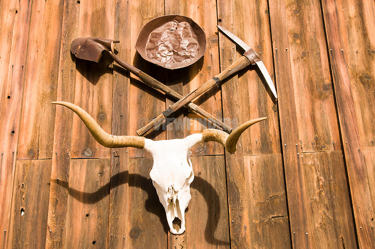 Longhorn skull with pick axe and shovel along Highway 50.