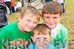 Lixnaw Horse Fair: Attending Lixnaw horse fair on Sunday last were  Jamie, Ricky & Patrick O'Brien, Lixnaw.