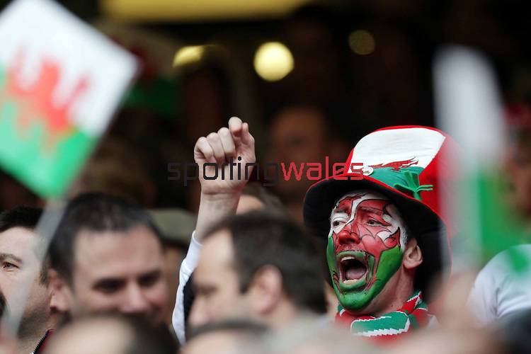 A fan dressed for the occasion celebrates as he watches Wales beat Italy..2008 RBS Six Nations Championship..Wales v Italy.Millennium Stadium.23.02.08.©Steve Pope.Sportingwales.The Manor .Coldra Woods.Newport.South Wales.NP18 1HQ.07798 830089.01633 410450.steve@sportingwales.com.www.fotowales.com.www.sportingwales.com