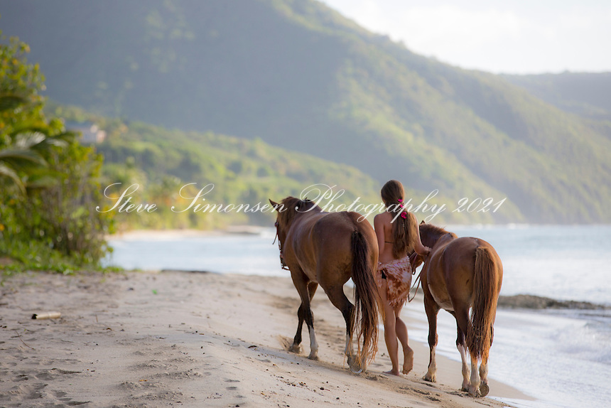 Horses at Cane Bay<br />