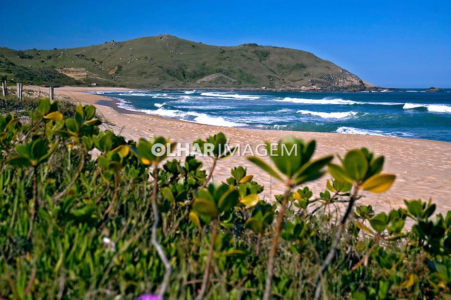 Praia Silveira. Santa Catarina. 2006. Foto de Cris Berger.