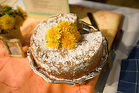 A dandelion cake with dandelion garnish