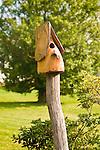 Woodland Creations birdhouse.