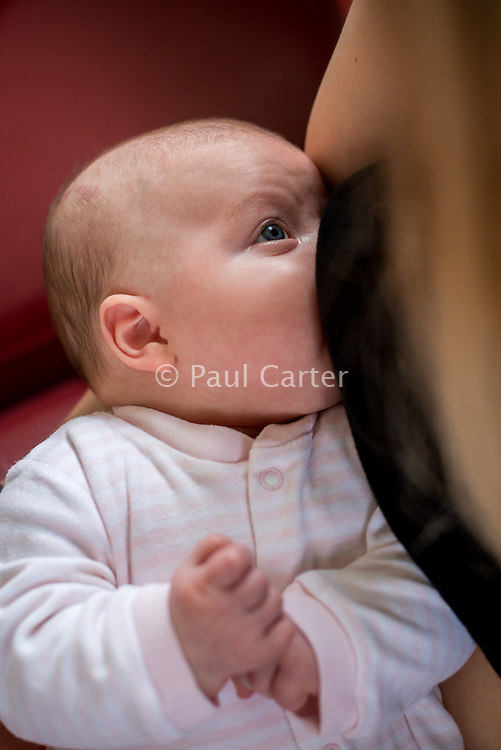 Close-up of a woman breastfeeding her 2 month old baby.<br /> <br /> Hampshire, England, UK<br /> 10/02/2013