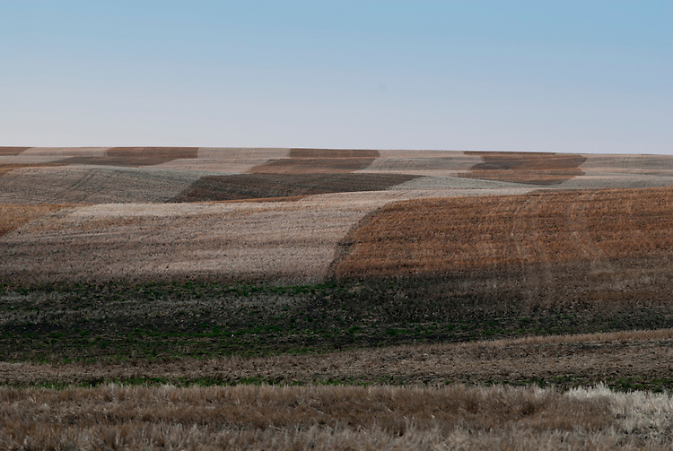 Farmland in southwestern Manitoba, Canada, in the spring.