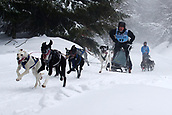 2nd February 2019, Thuringia, Frauenwald, Germany; Sled dog handler Dirk Juesch and his team. 120 mushers from five nations with their huskies, samoyeds, malamutes or Greenland dogs started.