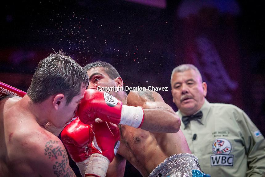 <br /> El Marqu&eacute;s, Quer&eacute;taro. 13 de febrero de 2016.- El boxeador queretano Andres &quot;El Jaguar&quot; Gutierrez se enfrent&oacute; al boxeador argentino<br /> Manuel &quot;El Terrible&quot; Echenique. En una pelea de la categor&iacute;a S&uacute;per Pluma, por el campeonato internacional de la WBC. El queretano result&oacute; victorioso por decisi&oacute;n un&aacute;nime.<br /> Foto: Demian Ch&aacute;vez