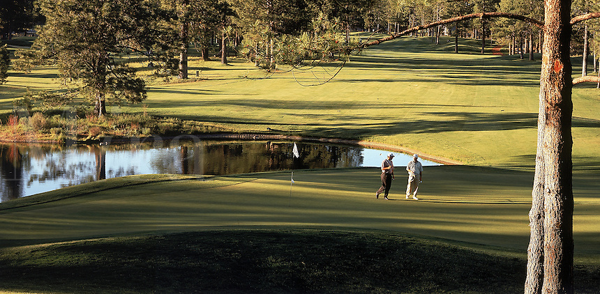 Golfing landscape of golfers on the 7th green of the Widgi Creek Course. Bend, Oregon.