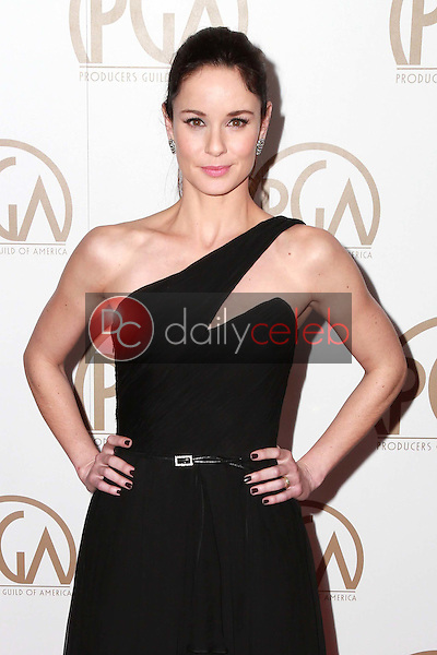 Sarah Wayne Callies<br />