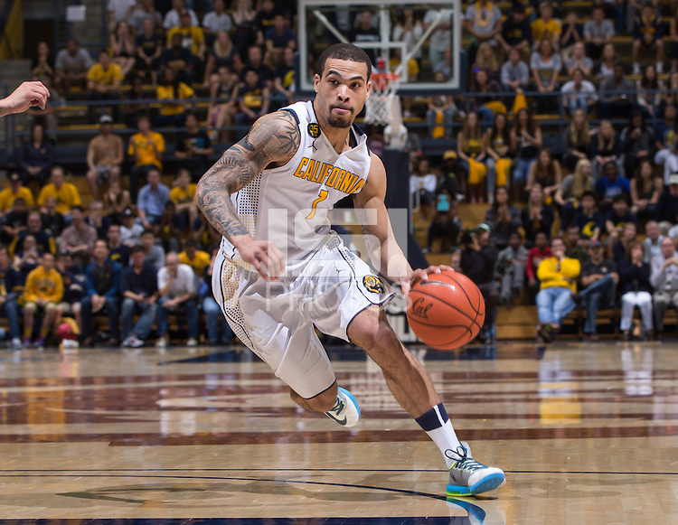 California's Justin Cobbs dribbles down the court during a  game at Haas Pavilion in Berkeley, California on March 8th, 2014. California defeated Colorado 66 - 65