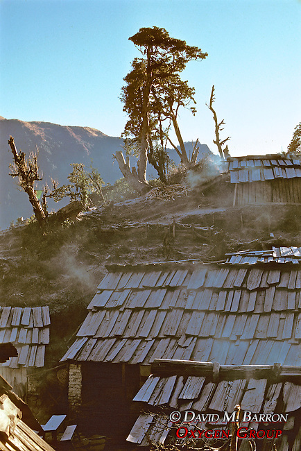 Steam On Roofs In Early Morning