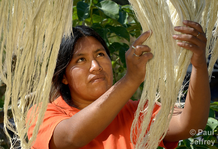 A Wichi indigenous woman in Los Dragones, Argentina, drying natural fiber that she will weave into string she'll use to make jewelry.