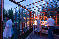 Guests enjoying the apricot tart served inside the glass house in the middle of a herb garden