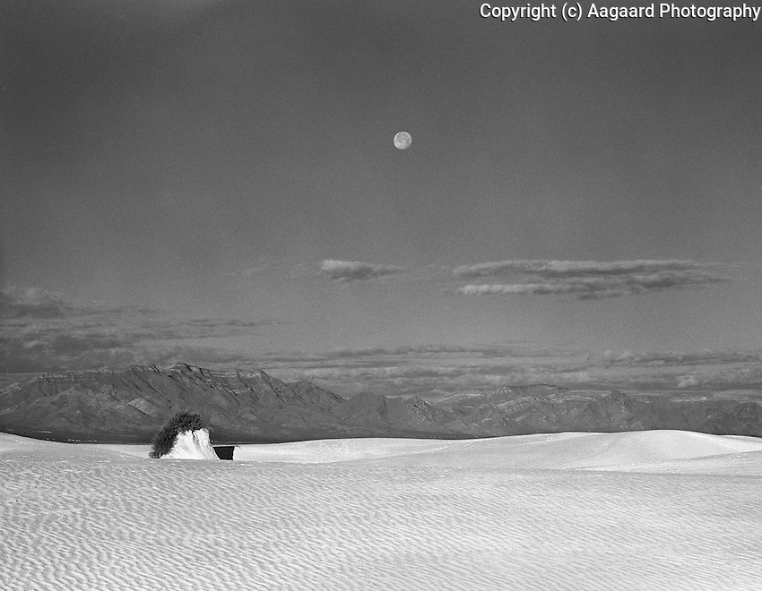 Moonset over White Sands.<br /> <br /> Mamiya RB67 Pro SD, 180mm lens, Kodak Tri-X film, red filter
