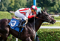 Spirit Animal (no. 3) wins the Race 6, Sep. 1, 2018 at the Saratoga Race Course, Saratoga Springs, NY.  Ridden by Javier Castellano, and trained by Chad Brown, Spirit Animal finished 1 1/4 lengths in front of Hubba Bubba (no. 10).  With this win, trainer Chad Brown broke the all time Saratoga trainer record for wins, his 41st of the meet.  (Bruce Dudek/Eclipse Sportswire)