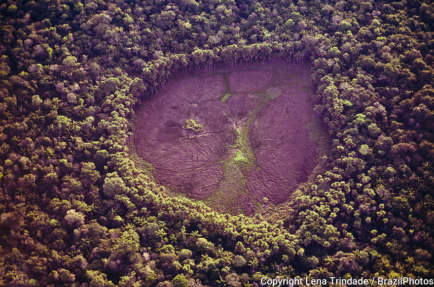 Aerial view of drought at Amazon rainforest, former flooded area - wetland in the shape of a heart - currently dry, surrounded by dense forest. Roraima State, north Brazil.