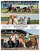 Glacken's Mark winning The Irish Sonnet Stakes at Delaware Park on 10/2/06