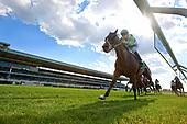 9th New York Stakes - Hawksmoor