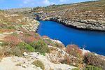 Limestone barrique vegetation Mgarr ix-Xini coastal inlet, island of Gozo, Malta