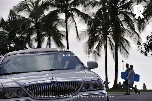Limousine car and surfers by palm tree (Licence this image exclusively with Getty: http://www.gettyimages.com/detail/83749919 )