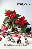 Helga, CHRISTMAS SYMBOLS, WEIHNACHTEN SYMBOLE, NAVIDAD SÍMBOLOS, photos+++++,DTTH3949,#xx#